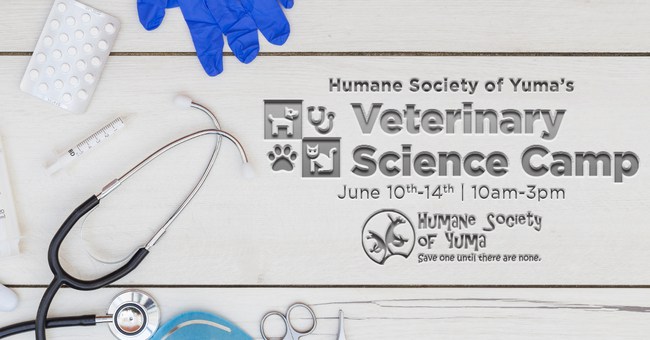 HSOY Veterinary Science Camp