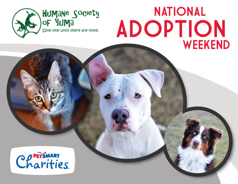 Petsmart Charities National Adoption Weekend Humane Society Of